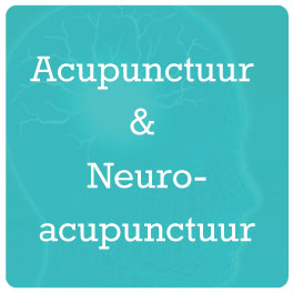 Acupunctuur-en-Neuroacupunctuur